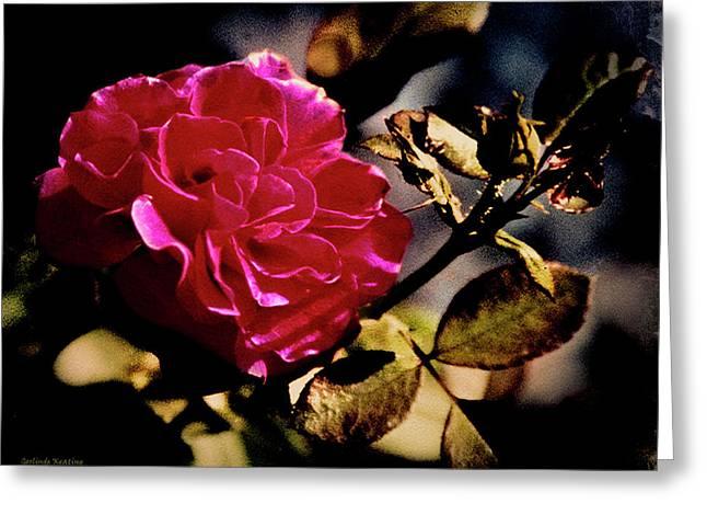 Autumn Rose Greeting Card by Gerlinde Keating - Galleria GK Keating Associates Inc