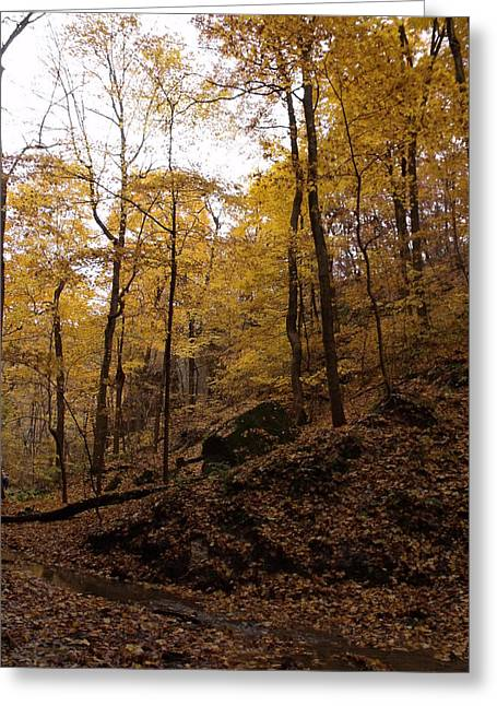 Anna Villarreal Garbis Greeting Cards - Autumn Scene II Greeting Card by Anna Villarreal Garbis