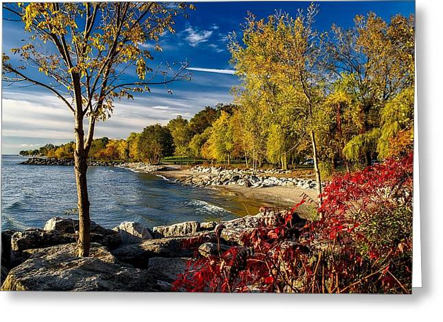 Autumn Scene Lake Ontario Canada Greeting Card
