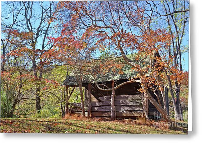 Autumn Shed  Greeting Card by Savannah Gibbs