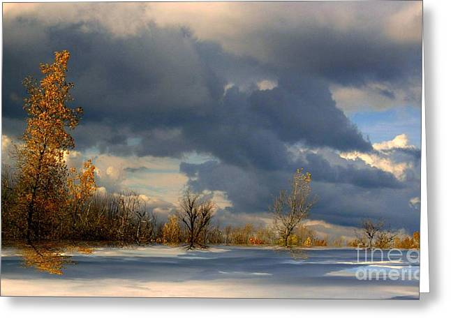 Greeting Card featuring the photograph Autumn Skies  by Elfriede Fulda