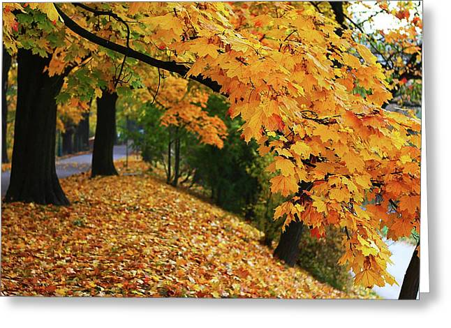 Autumn Smiling Greeting Card