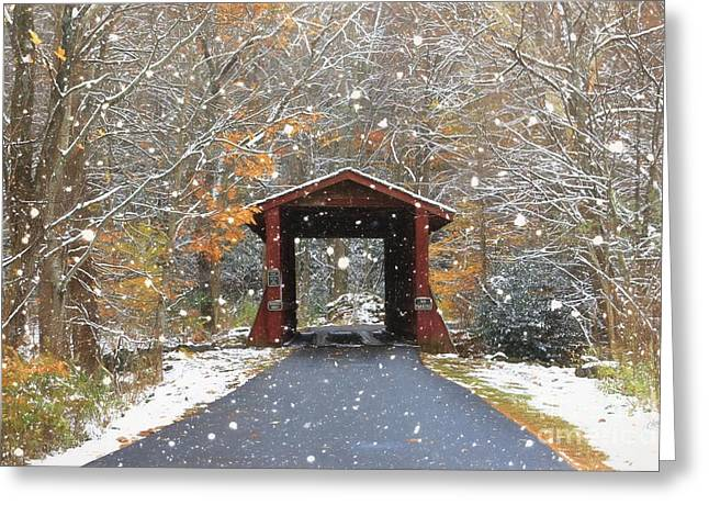 Autumn Snow Greeting Card by Benanne Stiens