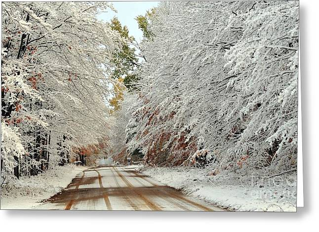 Autumn Snow In Pure Michigan Greeting Card by Terri Gostola