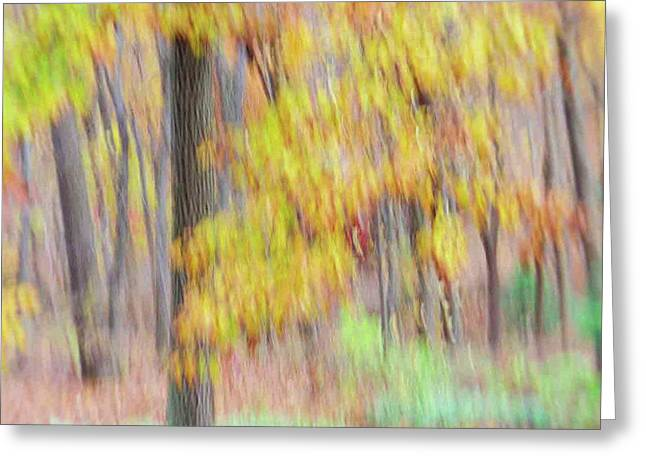Greeting Card featuring the photograph Autumn Splendor by Bernhart Hochleitner