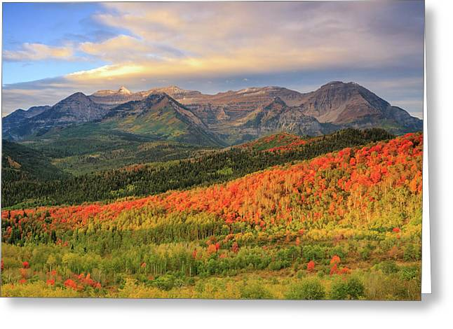 Autumn Splendor In The Wasatch Back. Greeting Card by Johnny Adolphson