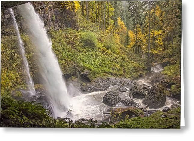 Autumn Spray Greeting Card by Loree Johnson
