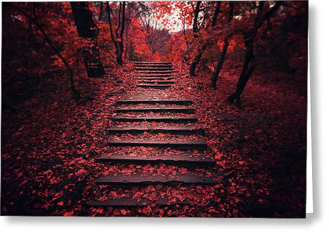 Autumn Stairs Greeting Card by Zoltan Toth