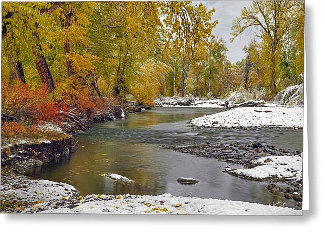 Autumn Stillness Greeting Card by Leland D Howard