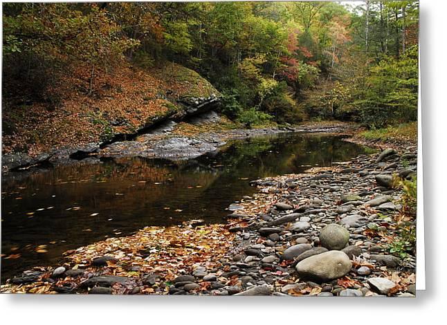 Autumn Stream Greeting Card by James Elam