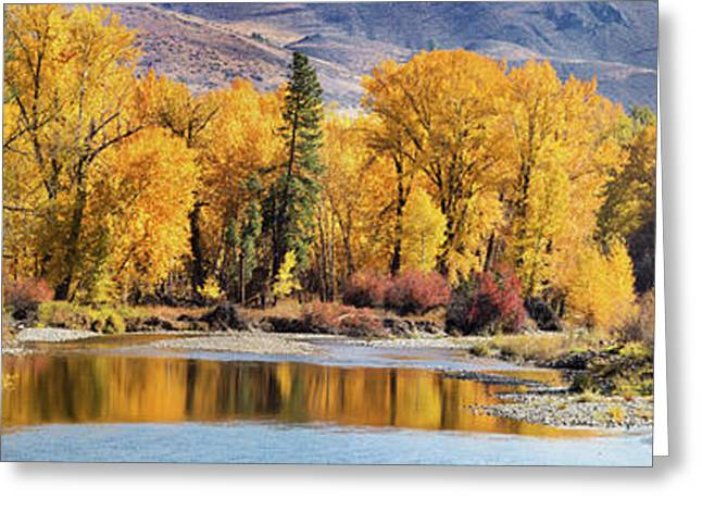 Autumn Stream Greeting Card by Mary Jo Allen