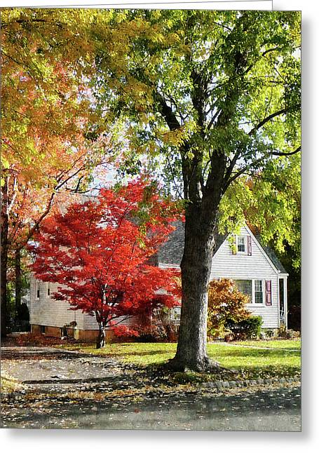 Autumn Street With Red Tree Greeting Card by Susan Savad