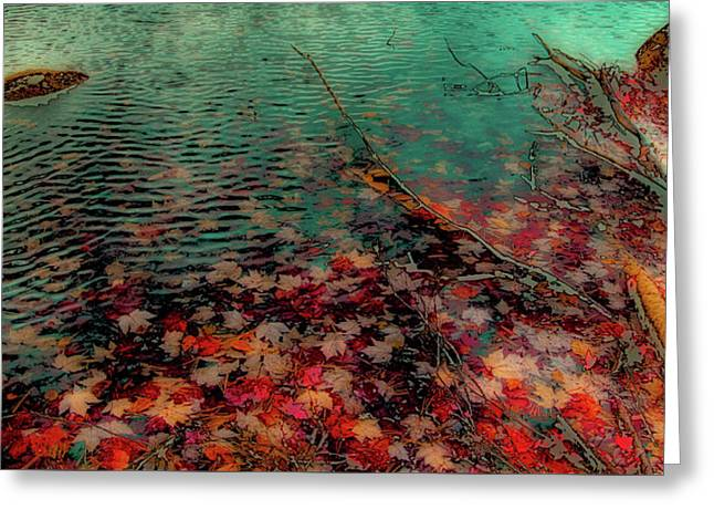 Autumn Submerged Greeting Card by David Patterson