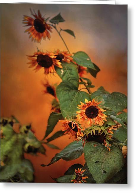 Autumn Sunflowers Greeting Card by Theresa Campbell