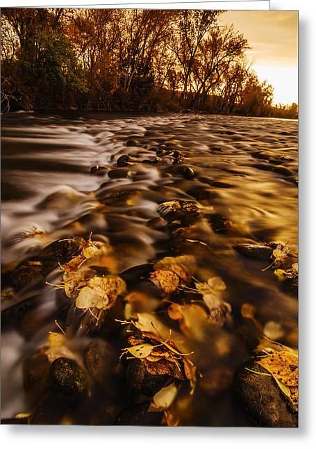 Autumn Sunrise Along Boise River In Boise Idaho Greeting Card by Vishwanath Bhat