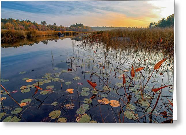 Autumn Sunrise At Compass Pond Greeting Card
