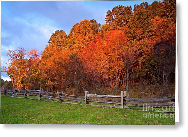 Greeting Card featuring the photograph Autumn Sunrise At Peaks Of Otter In The Blue Ridge by Dan Carmichael