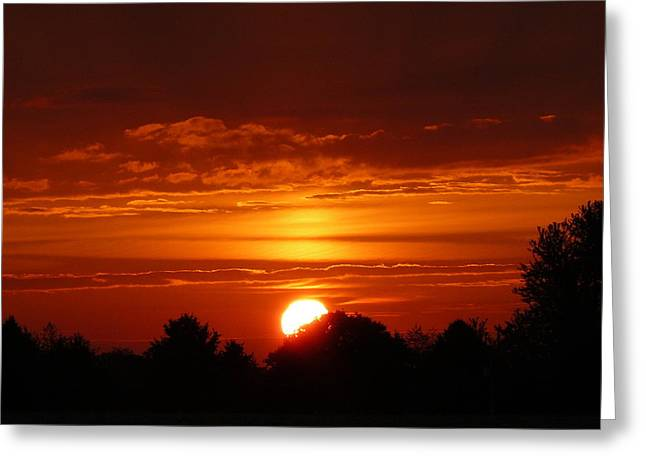 Indiana Autumn Greeting Cards - Autumn Sunset Greeting Card by Susan Olga Linville