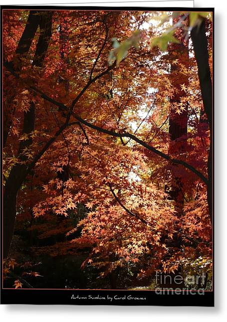Autumn Sunshine Poster Greeting Card