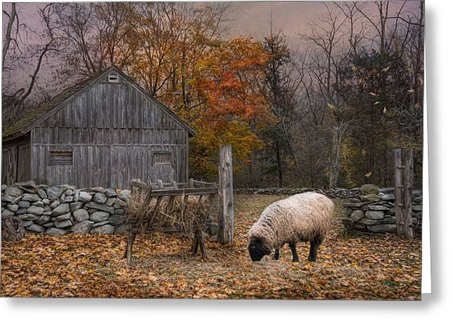 Autumn Sweater Greeting Card