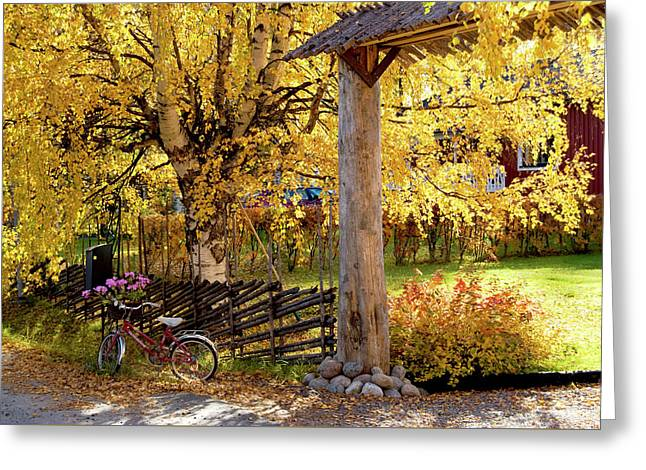 Rural Rustic Autumn Greeting Card