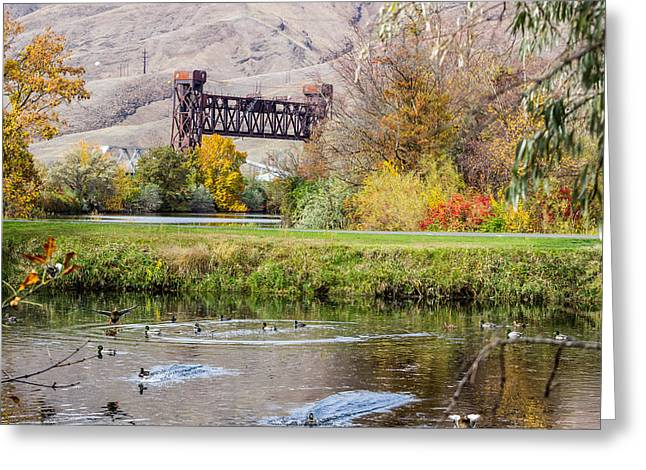 Autumn Train Bridge Greeting Card by Brad Stinson