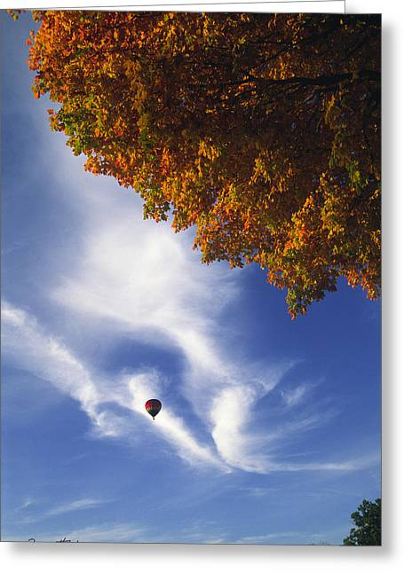Autumn Traveler - Lake Geneva Wisconsin Greeting Card