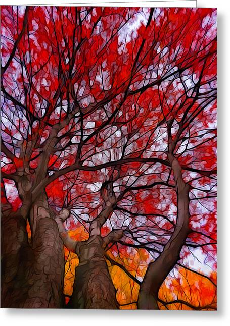 Autumn Tree Crowns Greeting Card by Lilia D