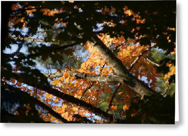 Autumn Trees 2015 Pa 01 Greeting Card by Thomas Woolworth
