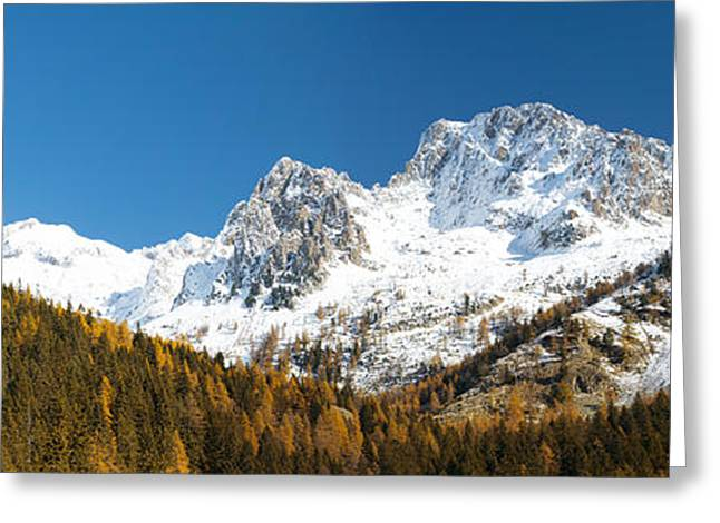 Autumn Trees And First Snow In French Greeting Card by Panoramic Images