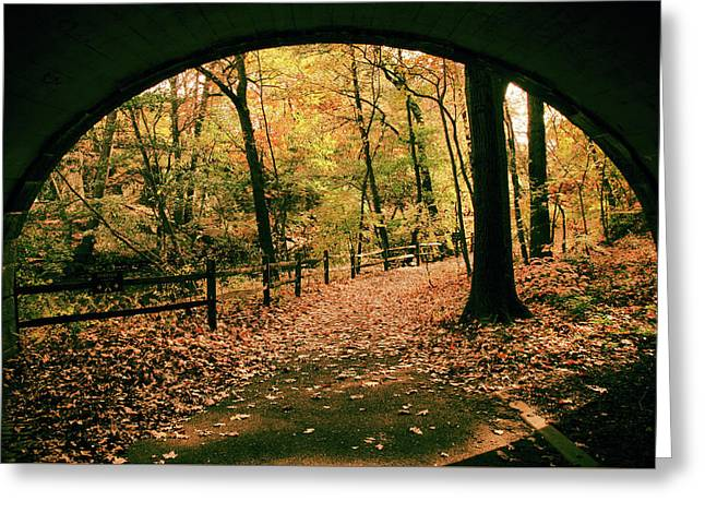 Autumn Tunnel Vision Greeting Card