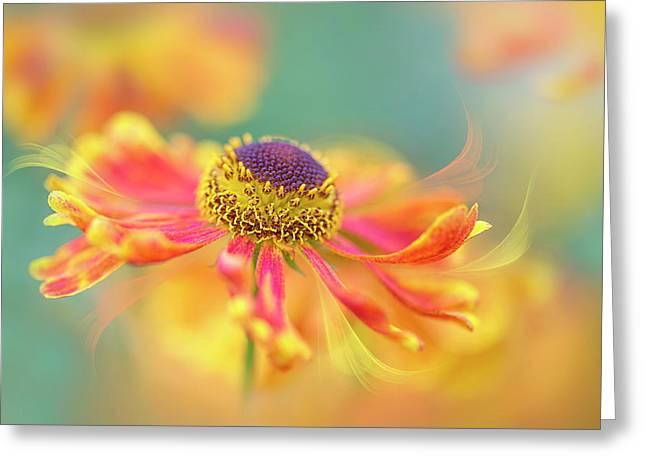 Autumn Twirl Greeting Card