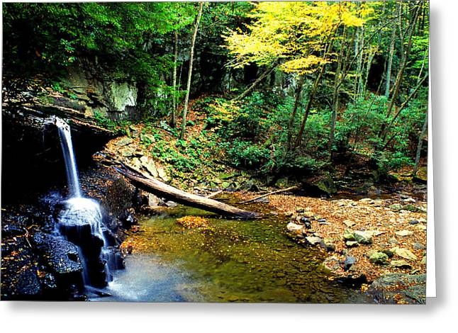 Autumn Upper Falls Holly River Greeting Card by Thomas R Fletcher