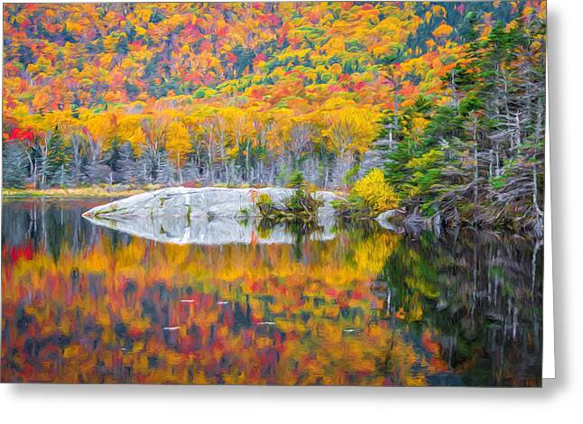 Autumn Vibrance Greeting Card by Black Brook Photography