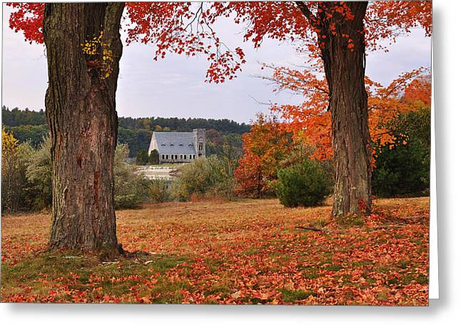 Autumn View Greeting Card by Luke Moore