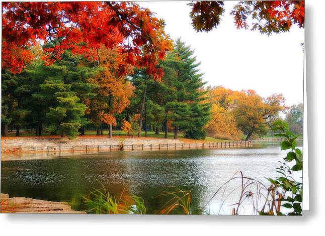 Autumn View Greeting Card by Teresa Schomig
