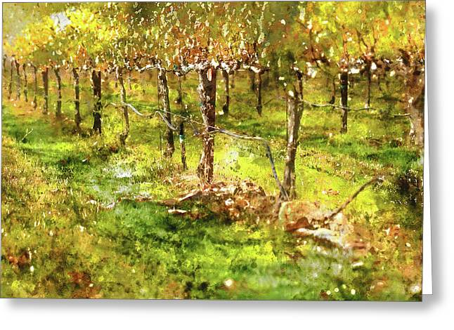 Autumn Vineyard Greeting Card by Brandon Bourdages