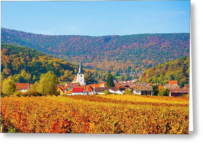 Autumn Vineyard Palatinate  Pfaizerwald Region Germany Greeting Card