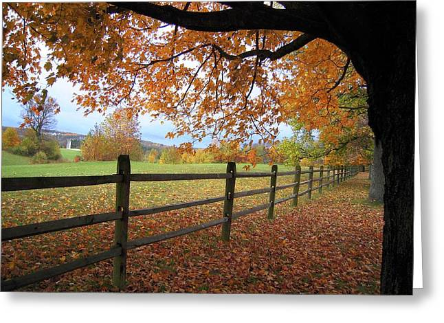 Greeting Card featuring the photograph Autumn Vista by Don Struke