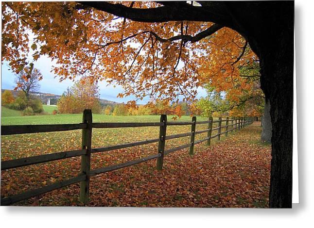 Autumn Vista Greeting Card by Don Struke