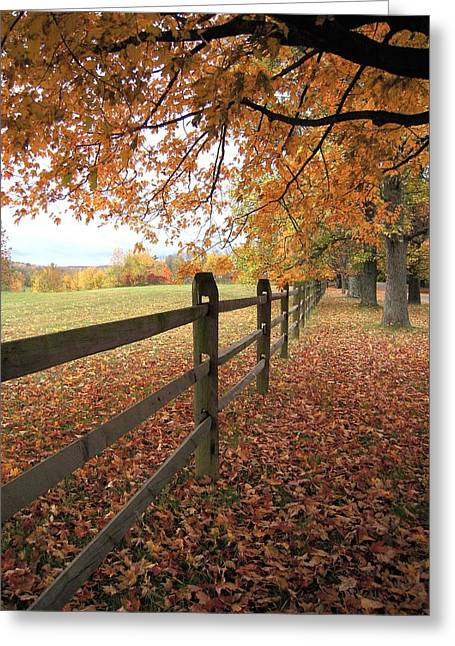 Greeting Card featuring the photograph Autumn Vista In Virginia by Don Struke