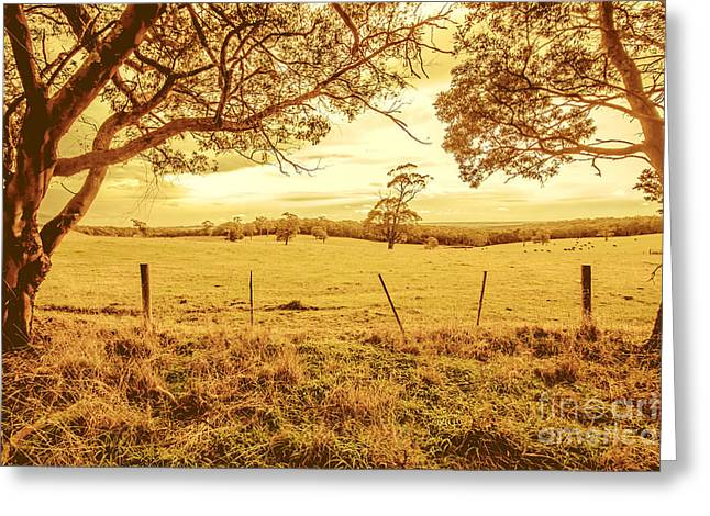 Autumn Vista Greeting Card by Jorgo Photography - Wall Art Gallery