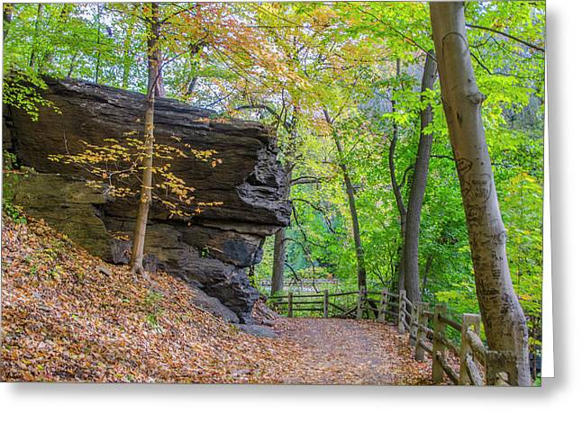 Greeting Card featuring the photograph Autumn Walk In Fairmount Park -  Licoln Drive by Bill Cannon
