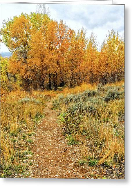Autumn Walk Photo Greeting Card