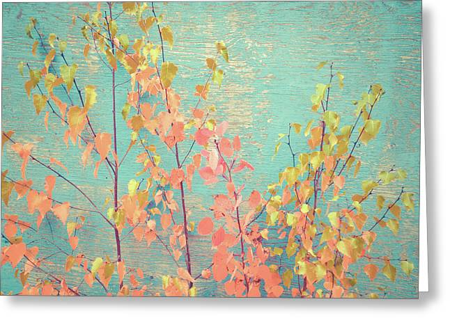 Greeting Card featuring the photograph Autumn Wall by Ari Salmela