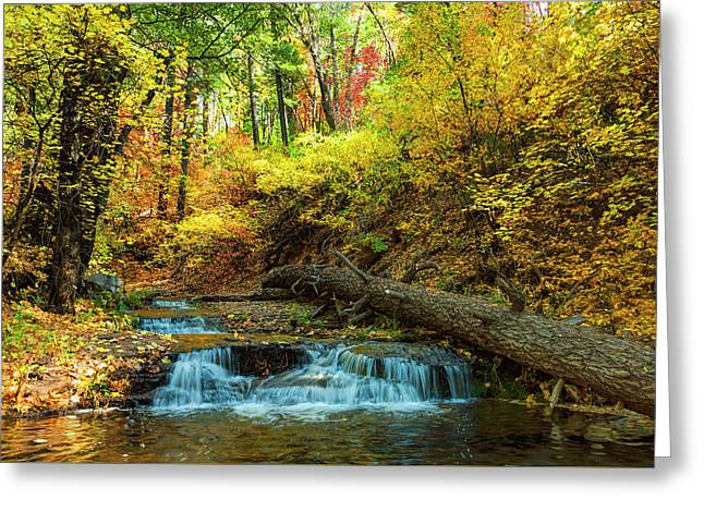 Greeting Card featuring the photograph Autumn Waterfall by Anthony Citro