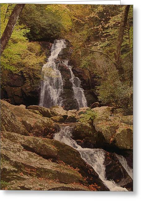 Autumn Waterfall In The Great Smoky Mountains Greeting Card by Dan Sproul