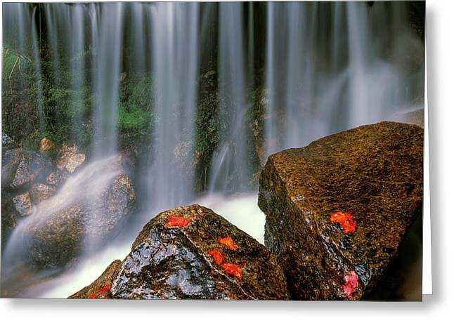 Autumn Waterfall Greeting Card by Leland D Howard