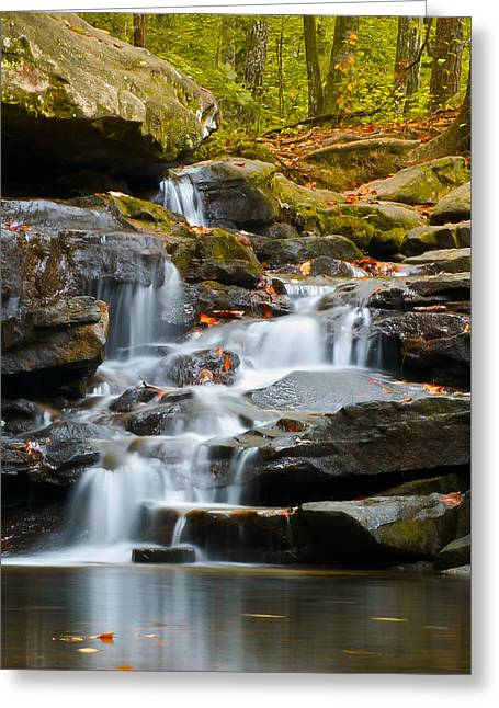 Autumn Waterfall Greeting Card by Shelby  Young