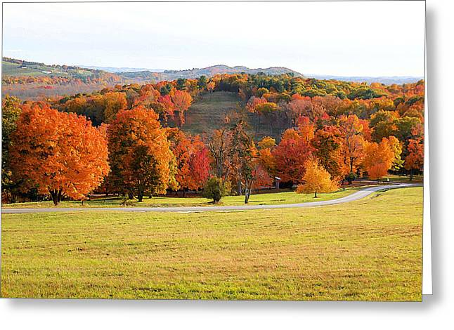 Autumn With Colorful Foliage 16 Greeting Card